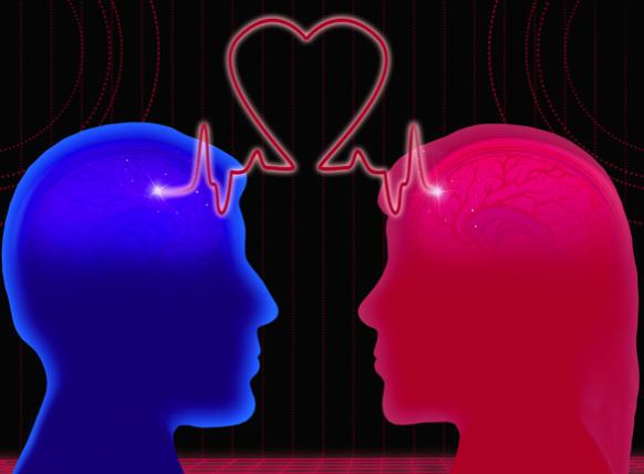 cerebro del hombre y la mujer